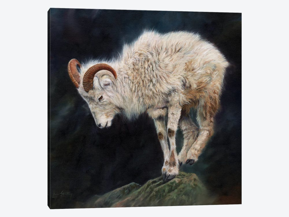 Mountain Goat II by David Stribbling 1-piece Canvas Art