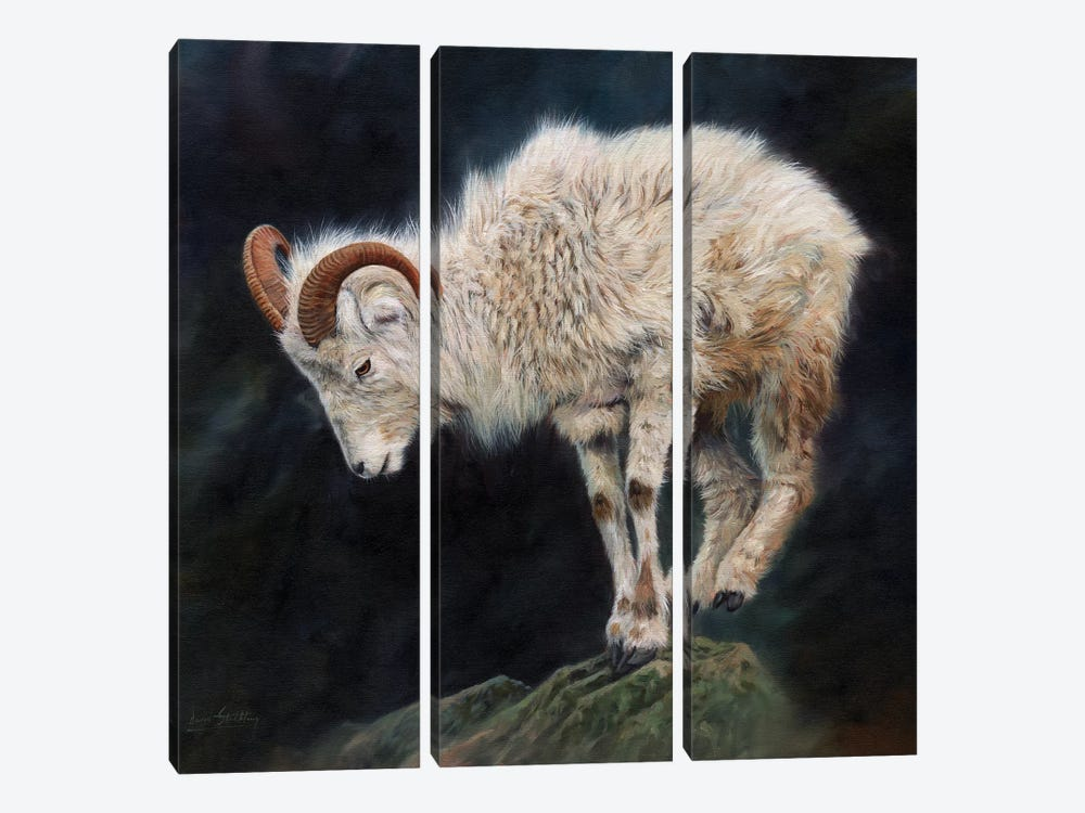 Mountain Goat II by David Stribbling 3-piece Canvas Artwork