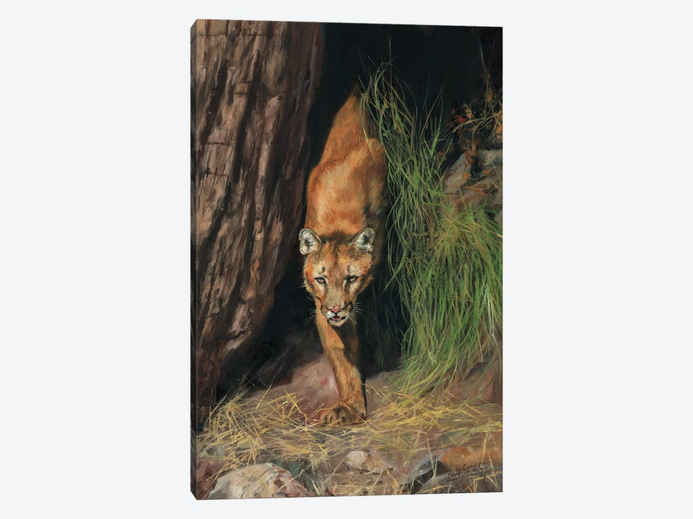 Mountain Lion I by David Stribbling 1-piece Canvas Print