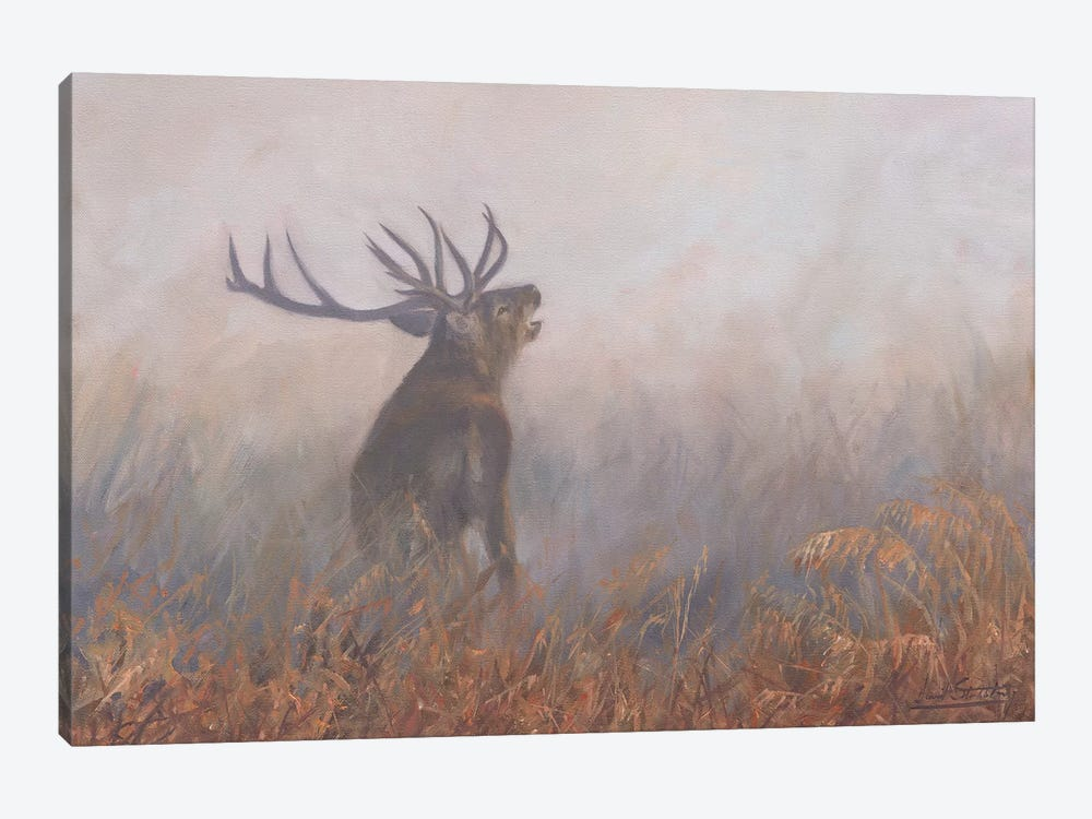 Red Deer Misty Morning by David Stribbling 1-piece Canvas Artwork