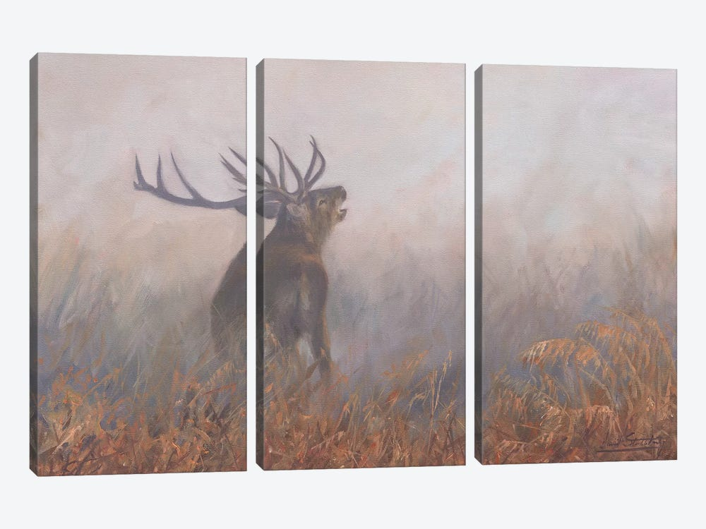 Red Deer Misty Morning by David Stribbling 3-piece Canvas Wall Art
