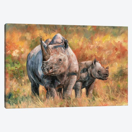Rhino And Baby Canvas Print #STG90} by David Stribbling Canvas Print