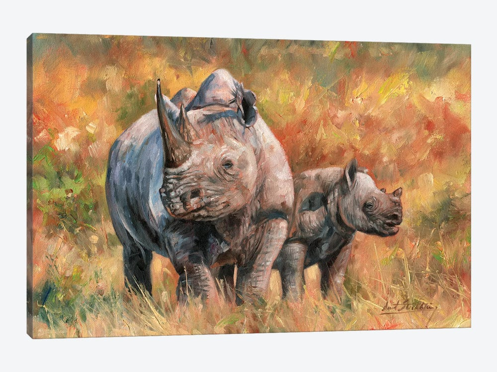 Rhino And Baby by David Stribbling 1-piece Canvas Art
