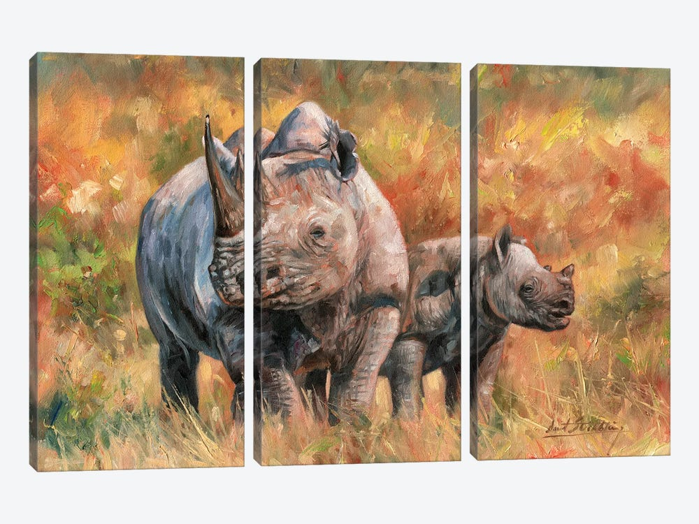 Rhino And Baby by David Stribbling 3-piece Canvas Wall Art