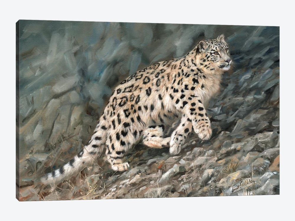 Snow Leopard Ascent by David Stribbling 1-piece Canvas Wall Art