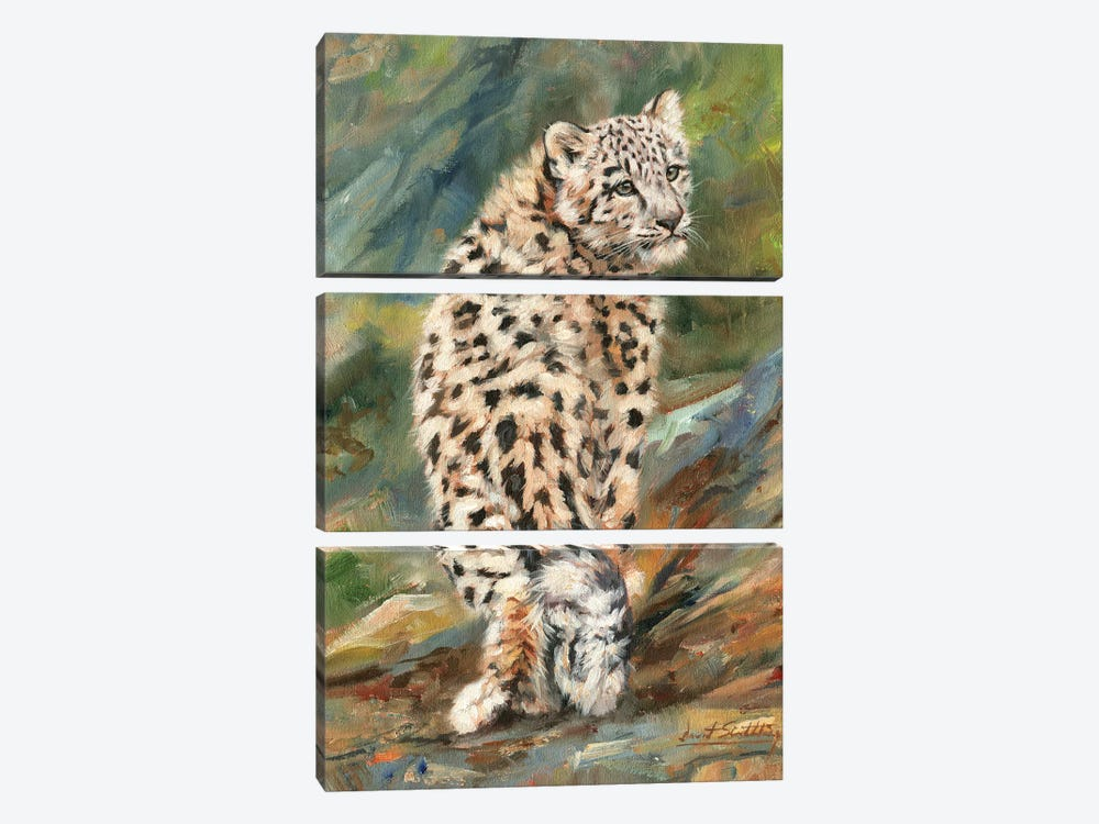 Snow Leopard Cub Looking Back by David Stribbling 3-piece Canvas Art
