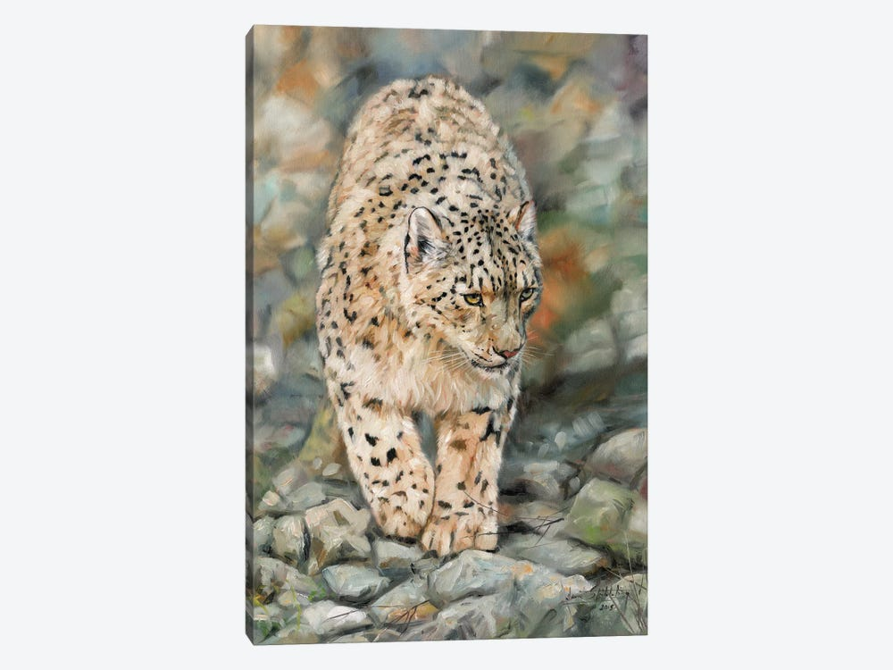 Snow Leopard II by David Stribbling 1-piece Canvas Artwork