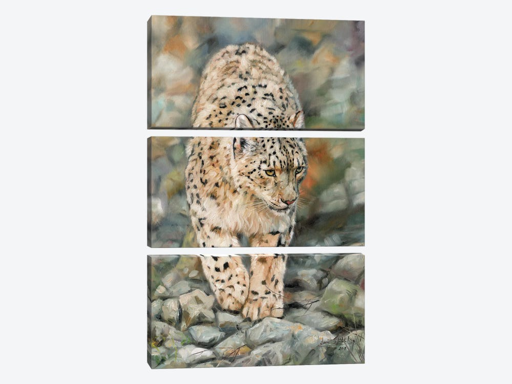 Snow Leopard II by David Stribbling 3-piece Canvas Art