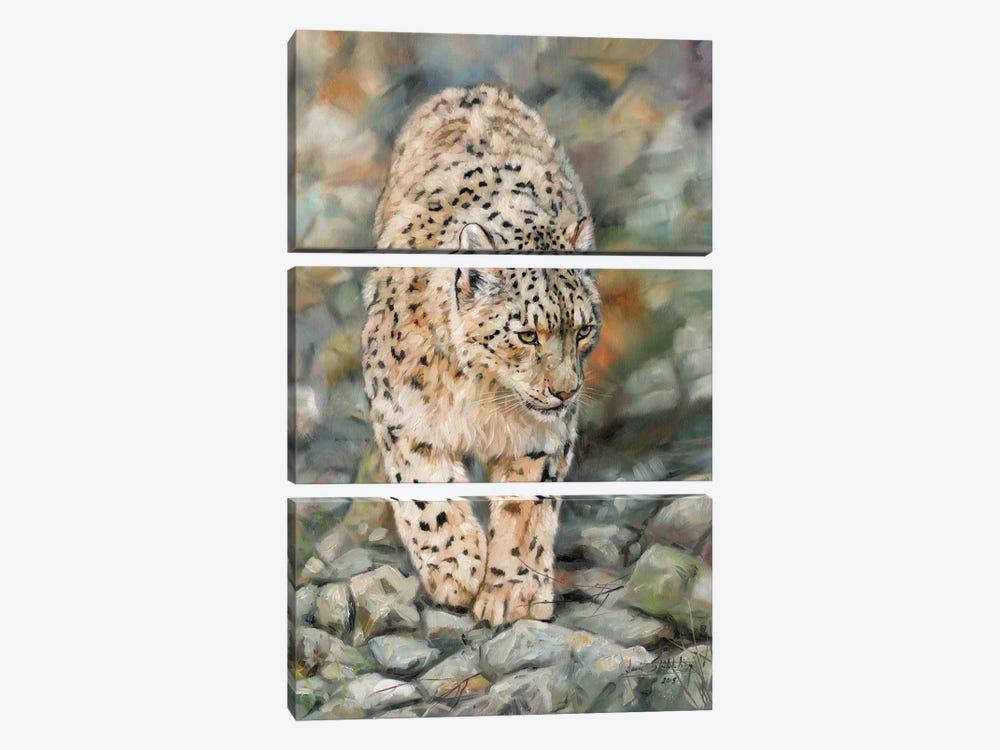 Snow Leopard II by David Stribbling 3-piece Canvas Art