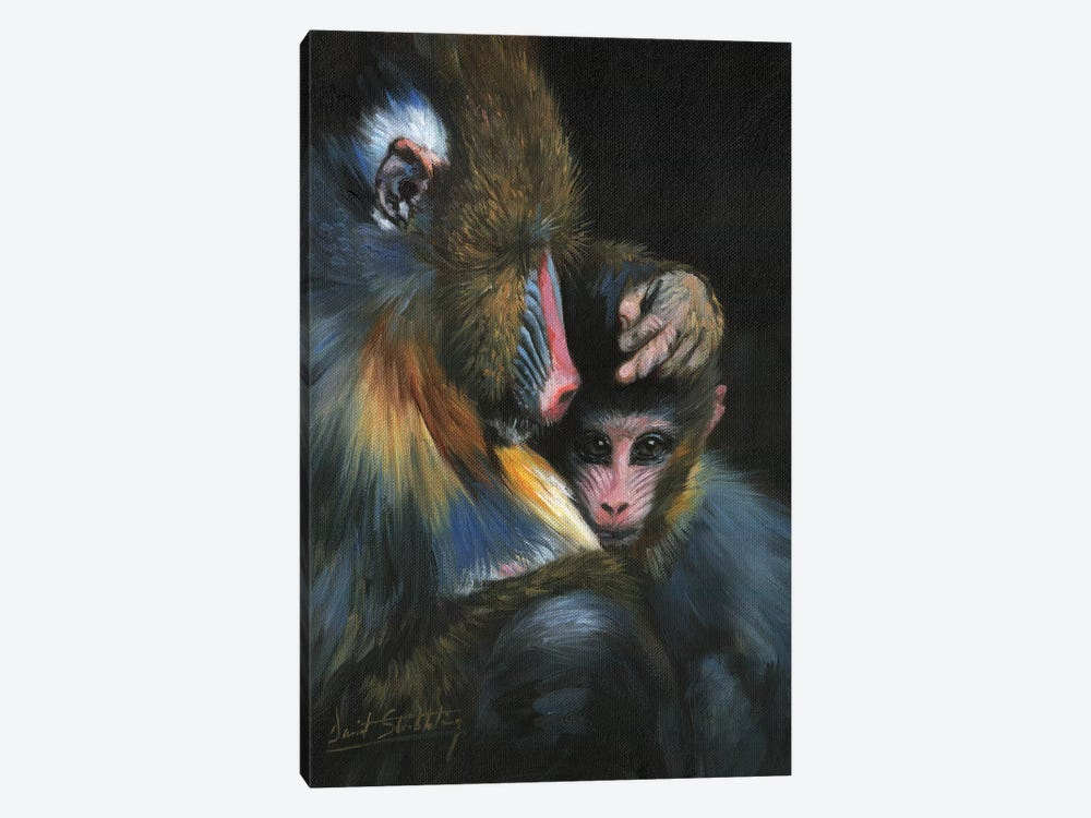 Baboon Mother And Baby by David Stribbling 1-piece Art Print