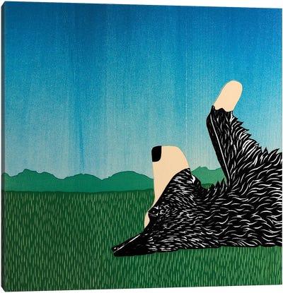 Day Dreaming Borador Canvas Art Print