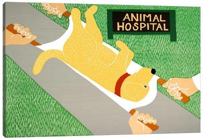 Animal Hospital Yellow Canvas Print #STH5