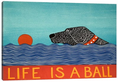 Life Is A Ball Black Canvas Print #STH60