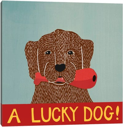 A Lucky Dog (Chocolate Lab Puppy) Canvas Print #STH73
