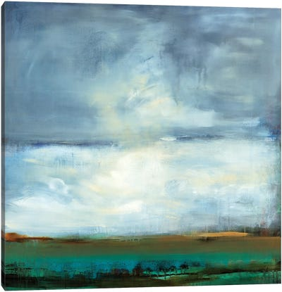 Shifting Plains Canvas Art Print