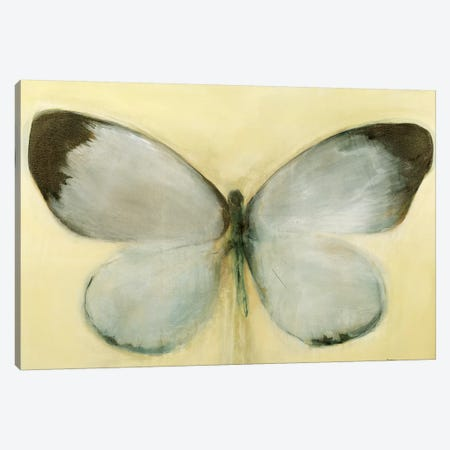Chrysalis Canvas Print #STK35} by Sarah Stockstill Canvas Wall Art