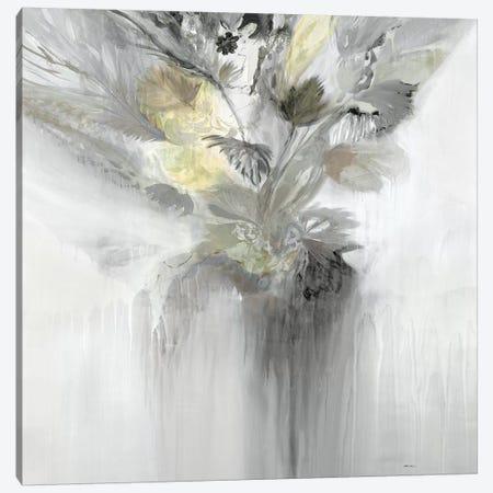Super Bloom V1 Canvas Print #STK62} by Sarah Stockstill Canvas Artwork