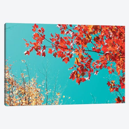 Autumn Tapestry I Canvas Print #STL1} by Judy Stalus Canvas Wall Art