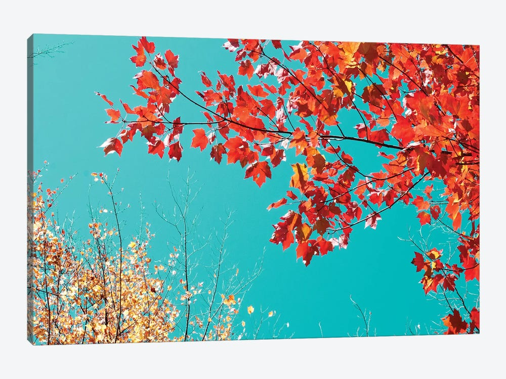 Autumn Tapestry I by Judy Stalus 1-piece Canvas Artwork