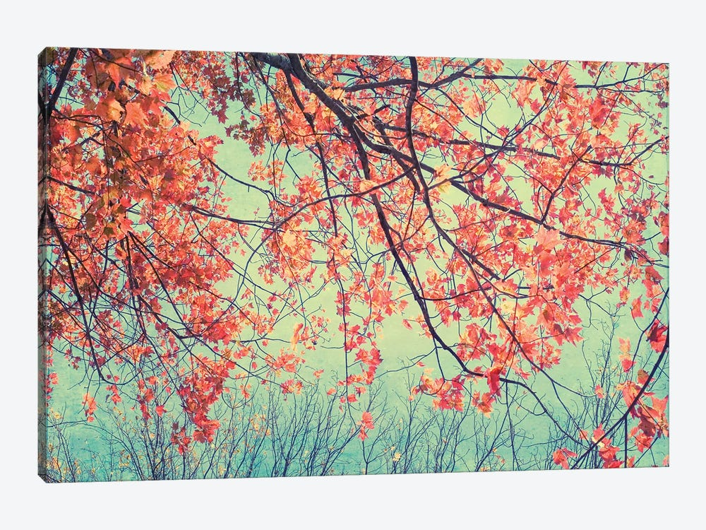 Autumn Tapestry II by Judy Stalus 1-piece Canvas Art Print