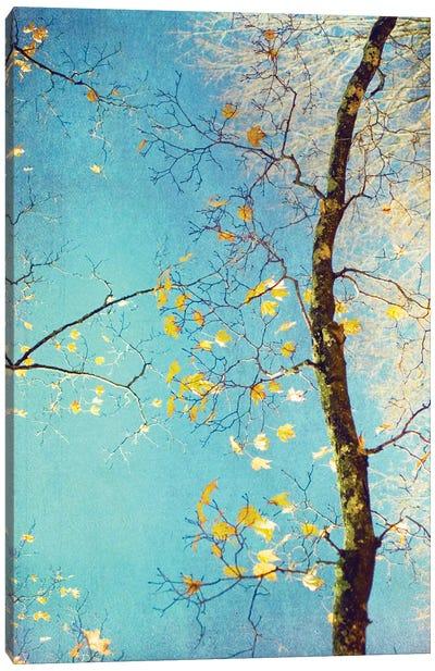 Autumn Tapestry III Canvas Art Print