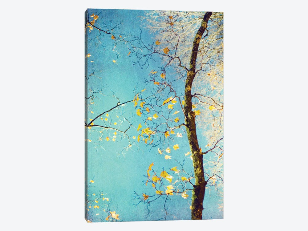 Autumn Tapestry III by Judy Stalus 1-piece Canvas Artwork