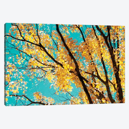 Autumn Tapestry IV Canvas Print #STL4} by Judy Stalus Canvas Art Print