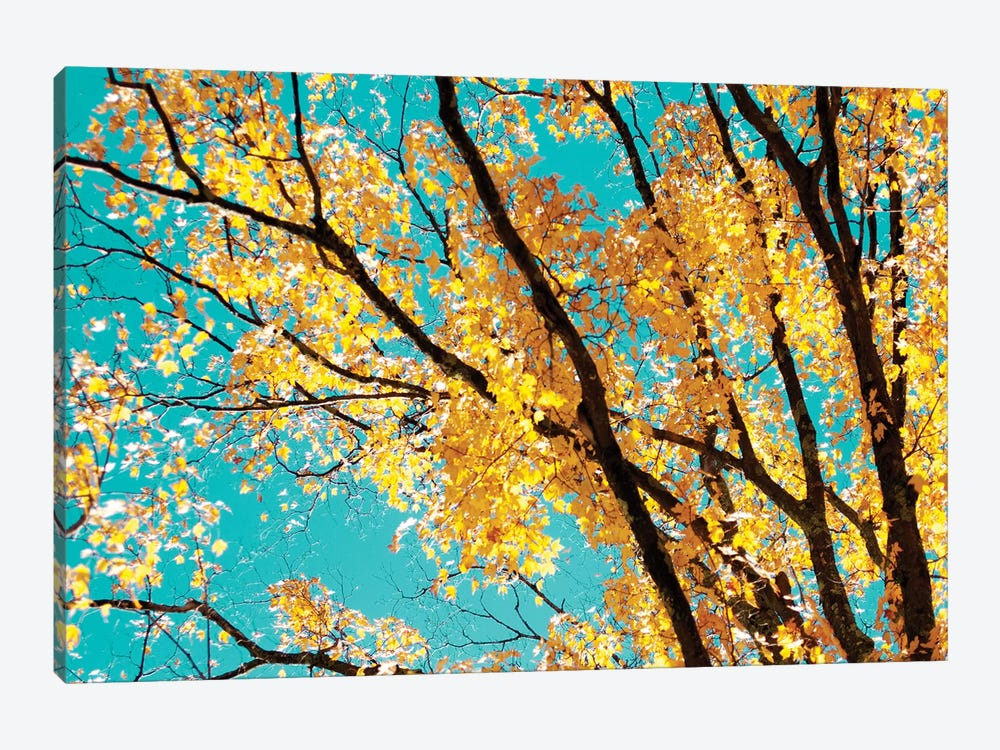 Autumn Tapestry IV by Judy Stalus 1-piece Canvas Print