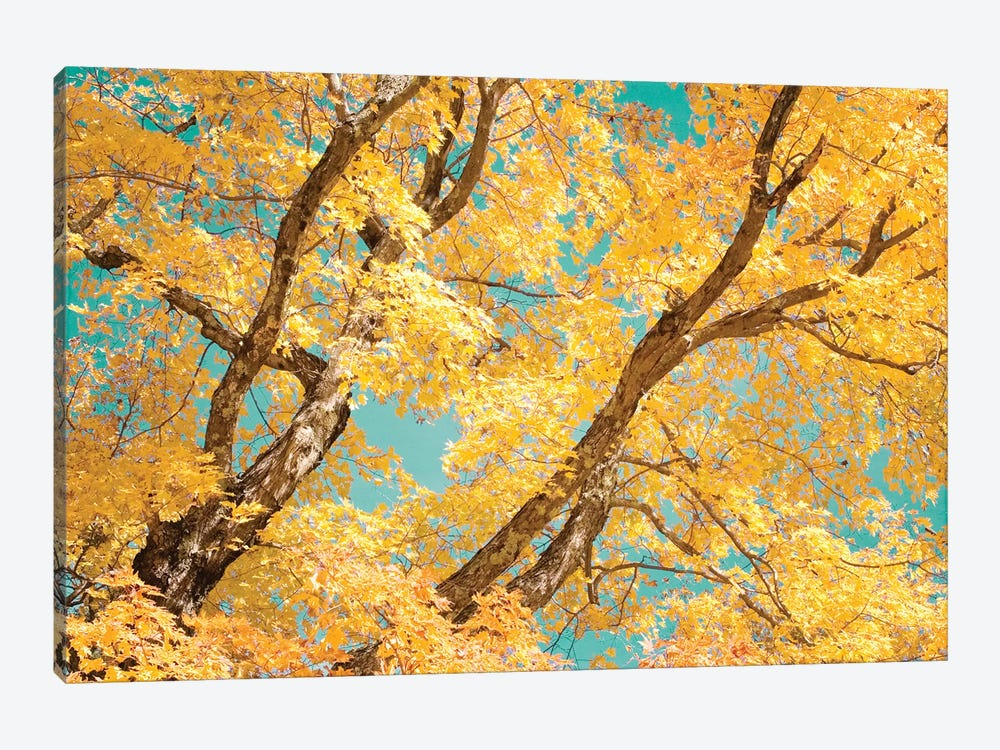 Autumn Tapestry V by Judy Stalus 1-piece Canvas Wall Art
