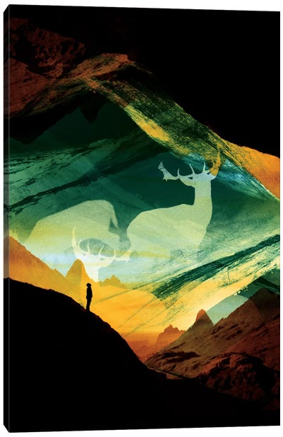 Native Dreamcatcher Canvas Print #STO27