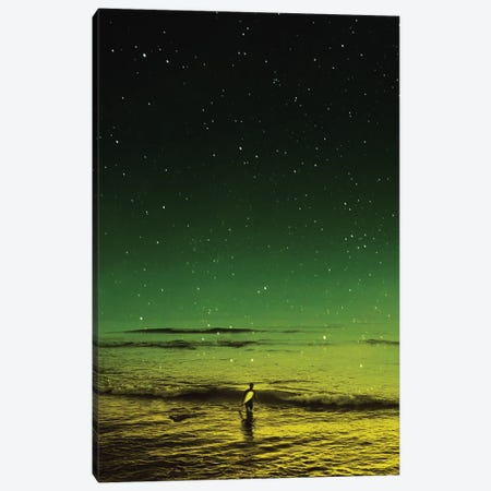 Lost Surfer Canvas Print #STO36} by Stoian Hitrov Canvas Wall Art
