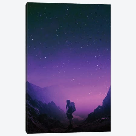 Not All Those Who Wander Are Lost Canvas Print #STO37} by Stoian Hitrov Canvas Artwork