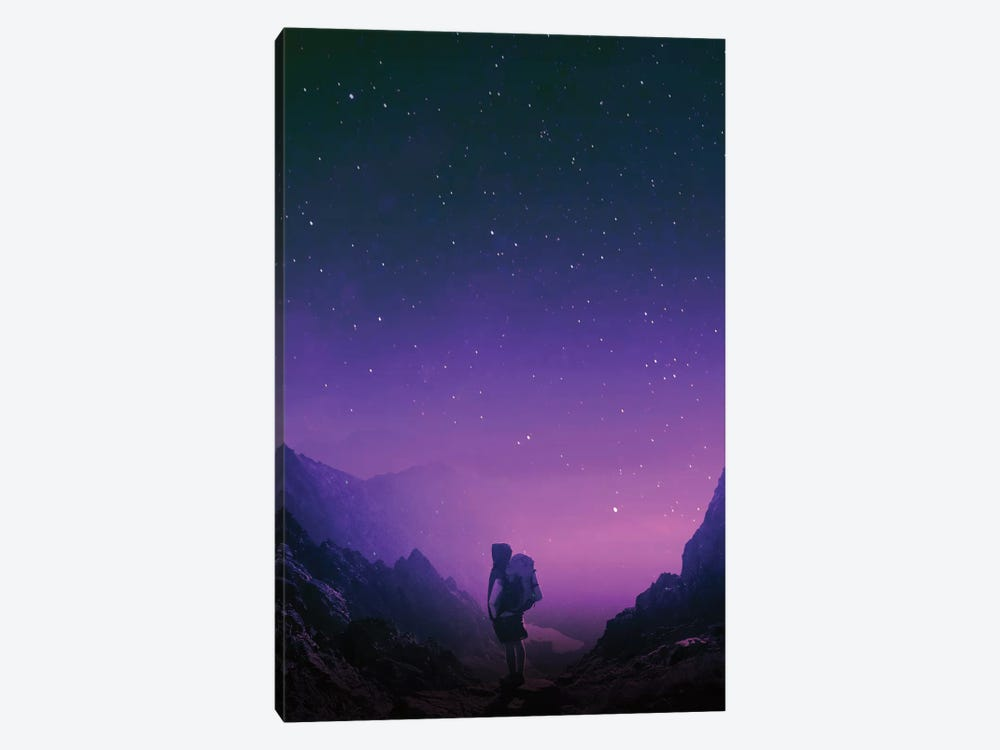 Not All Those Who Wander Are Lost by Stoian Hitrov 1-piece Canvas Wall Art