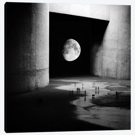 To The Moon Canvas Print #STO47} by Stoian Hitrov Canvas Print