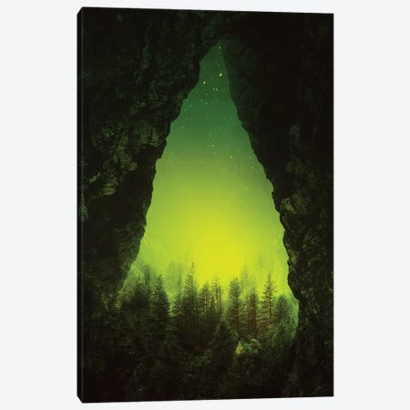 Toxic Forest Canvas Print #STO49} by Stoian Hitrov Canvas Artwork