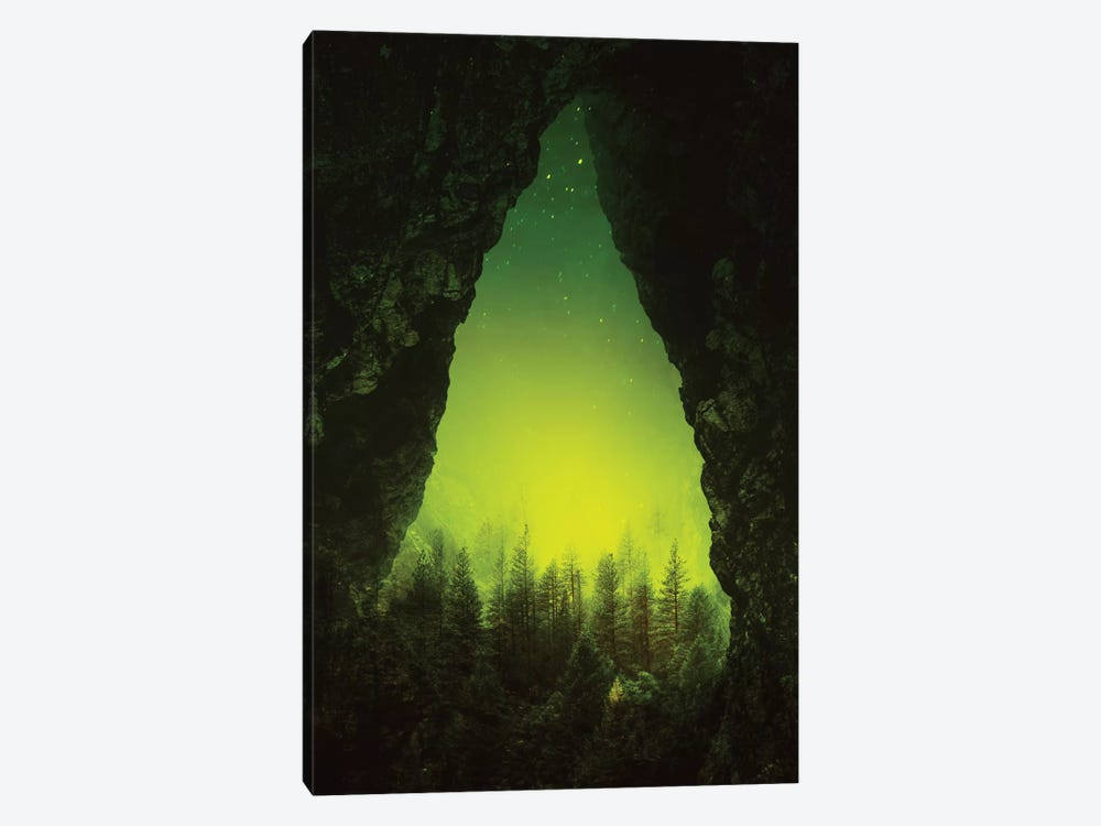 Toxic Forest by Stoian Hitrov 1-piece Canvas Art Print
