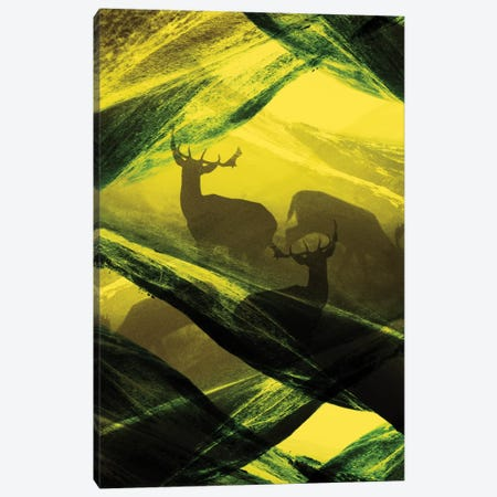 Complex Oh Deer Canvas Print #STO4} by Stoian Hitrov Canvas Art