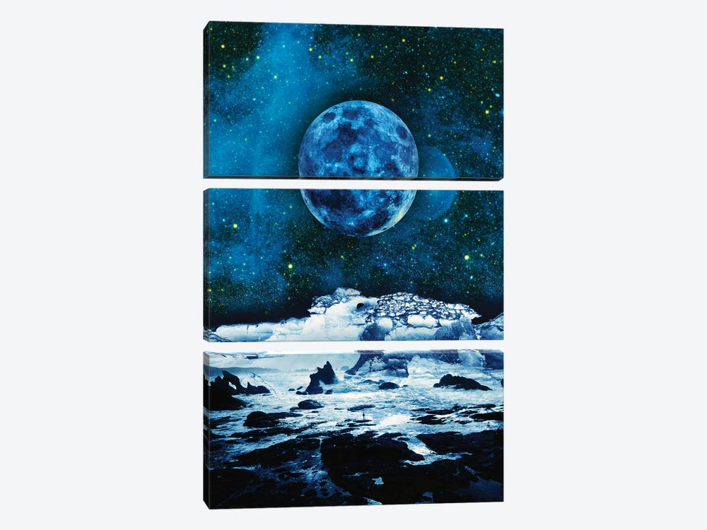 Blue Traveler by Stoian Hitrov 3-piece Canvas Print