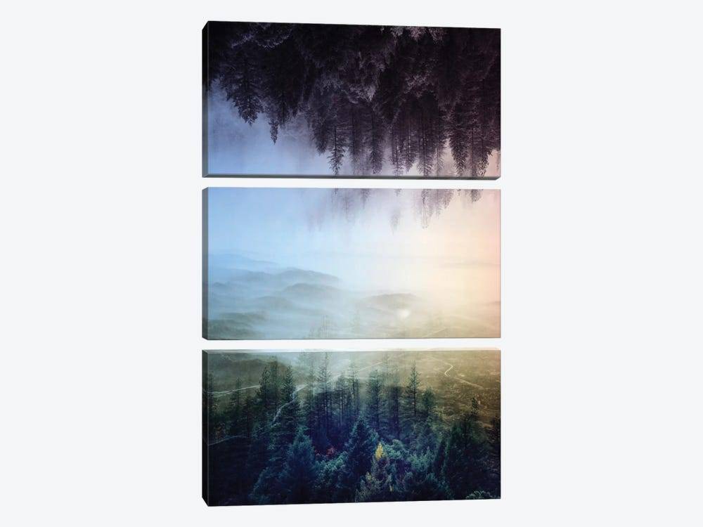 Flipped Forest by Stoian Hitrov 3-piece Art Print
