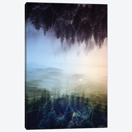 Flipped Forest Canvas Print #STO7} by Stoian Hitrov Canvas Art