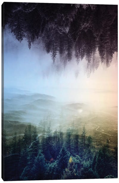 Flipped Forest Canvas Art Print