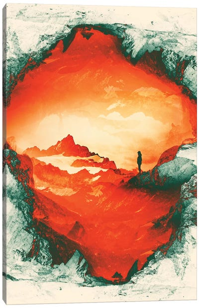 Occupy Mars Canvas Art Print