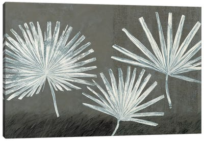 Three Palmettos Canvas Art Print