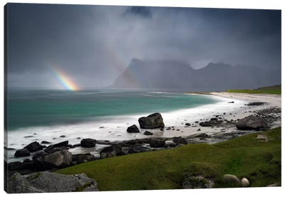 Lofoten, Norway I Canvas Art Print