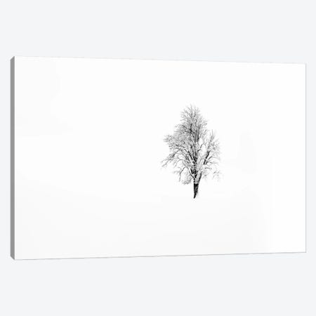 Nature I Canvas Print #STR117} by Andreas Stridsberg Canvas Print
