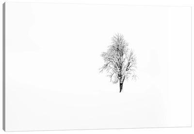 Nature I Canvas Art Print