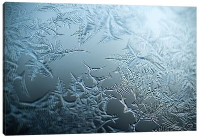 Ice Canvas Art Print