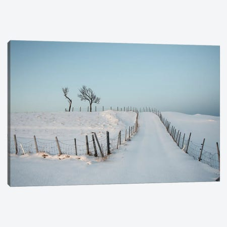Lofoten Snow Trail Canvas Print #STR143} by Andreas Stridsberg Art Print