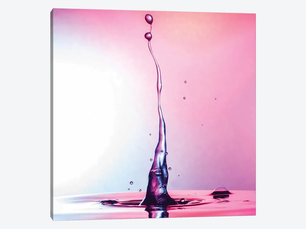 Magenta Beauty by Andreas Stridsberg 1-piece Canvas Artwork