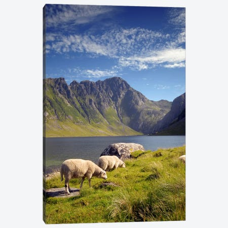 Eggum-Norway Canvas Print #STR14} by Andreas Stridsberg Canvas Print